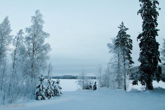 The view to Lake Konnevesi just as I step out the office, Konnevesi Research Station, Finland